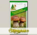 Мицелий зерновой Подберезовик Обыкновенный, 30 мл