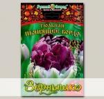 Тюльпан махровый поздний ПЬЯНЯЩЕЕ БОРДО, 5 шт. Эксклюзив