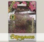 Гипсофила махровая Джипси Роз, 4 мультидраже (в каждом 5-7 семян) Platinum