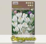 Крокус крупноцветковый JEANNE D'ARC, 12 шт.