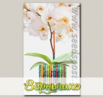 Кашпо Корона для орхидей Диамант, сборная