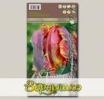 Тюльпан попугайный BLUMEX, 8 шт.