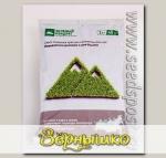 Газон Зеленый квадрат ® Для Кавказского региона и юга России, 1 кг