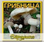 Грибница субстрат микоризный Масленок Белый, 1 л