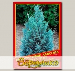 Кипарисовик Лавсона «Pelt's Blue», 0,2 г