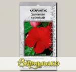 Катарантус Хитвейв Красный, 15 шт. Профессиональные семена