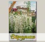 Вербаскум Соблазн Белый F1, 8 шт. Platinum