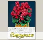 Маттиола Синдерелла Ред, 50 шт. СЕМКОМ ПРОФИ Takii seeds
