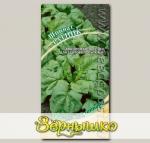 Шпинат Ратник, 2 г Семена от автора