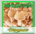 Мицелий зерновой Шимиджи, 150 мл
