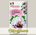 Виола Виттрока Фламенко Белая F1, 10 шт. Farao Итальянские сорта и гибриды