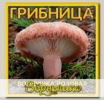 Грибница субстрат микоризный Волнушка Розовая, 1 л