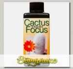 Удобрение для кактусов и суккулентов Cactus Focus, 100 мл
