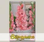 Гладиолус крупноцветковый CAPTIVA, 7 шт.
