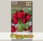 Тюльпан многоцветковый FIERY CLUB, 8 шт.