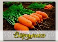 Морковь Арон F1, 0,5 г