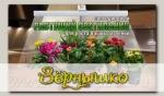 Фитосветильник (фитолампа) растущий ЗДОРОВЬЯ КЛАД, 9 Вт