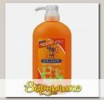 Шампунь-кондиционер для волос 2 в 1 против перхоти с экстрактами хурмы и трав Kakishibu, 600 мл