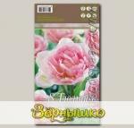 Тюльпан махровый поздний ANGELIQUE, 8 шт.
