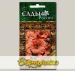 Портулак Сандал Персиковый, 10 шт. Мировые шедевры в подлиннике