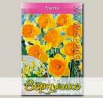 Нарцисс крупнокорончатый AKITA, 7 шт.