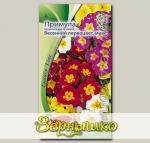 Примула крупноцветковая Весенний первоцвет, Смесь, 0,01 г Luxury Line