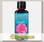 Удобрение для камелии Camellia Focus, 100 мл