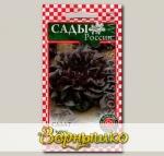 Салат листовой Гоген, 5 шт.
