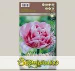 Тюльпан махровый ранний FOXTROT, 8 шт.