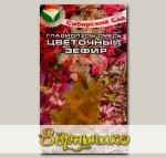 Гладиолус Цветочный зефир, Смесь семян, 5 г