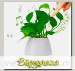 Умный музыкальный горшок для цветов Smart Music Flowerpot Белый