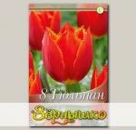 Тюльпан бахромчатый I TO HOLLAND, 8 шт. NEW