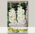 Гладиолус крупноцветковый WHITE PROSPERITY, 7 шт.