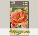 Тюльпан махровый поздний CHARMING BEAUTY, 8 шт.