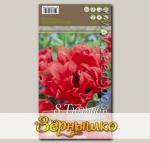 Тюльпан многоцветковый TORONTO DOUBLE, 8 шт.