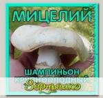 Мицелий зерновой Шампиньон Крупноплодный, 150 мл