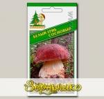 Мицелий зерновой Белый гриб Сосновый, 30 мл