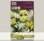 Нарцисс YELLOW/WHITE MIXED, 15 шт.