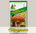 Мицелий зерновой Масленок Обыкновенный, 30 мл