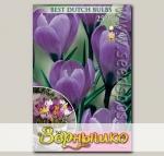 Крокус крупноцветковый GRAND MAITRE, 25 шт.