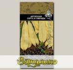 Фасоль овощная Черный жемчуг, 20 шт. Авторские сорта и гибриды