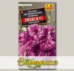 Эустома крупноцветковая Эйбиси Пурпурная F1, 5 шт. PanAmerican Seeds