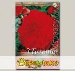 Бегония FIMBRIATA RED, 3 шт.