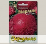 Астра китайская Мерлин Пурпурный, 70 шт.