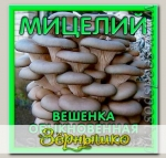 Мицелий зерновой Вешенка Обыкновенная, 150 мл