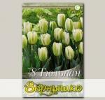 Тюльпан Триумф GREEN SPIRIT, 8 шт. NEW