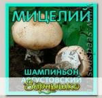 Мицелий зерновой Шампиньон Августовский, 150 мл