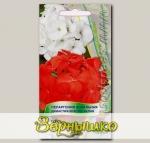 Пеларгония зональная Династия Красно-Белая, Смесь, 5 шт.