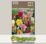 Тюльпан зеленоцветный MIXED, 8 шт.