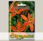 Беламканда китайская или Цветок леопарда Лесная орхидея, 6 шт.
